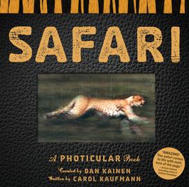 Safari - cover