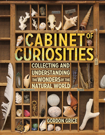 Cabinet of Curiosities - cover