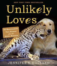 Unlikely Loves - cover