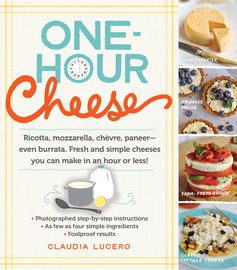 One-Hour Cheese - cover