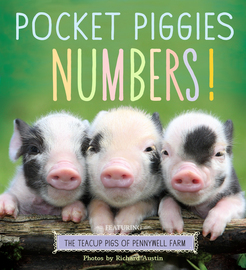 Pocket Piggies Numbers! - cover