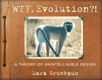 WTF, Evolution?! - cover
