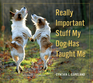 Really Important Stuff My Dog Has Taught Me - cover