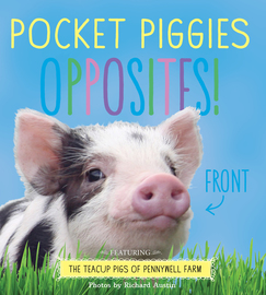 Pocket Piggies Opposites! - cover