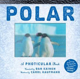 Polar - cover