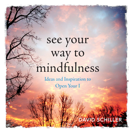 See Your Way to Mindfulness - cover