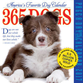 365 Dogs Page-A-Day Calendar 2017 - cover