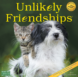 Unlikely Friendships Wall Calendar 2017 - cover