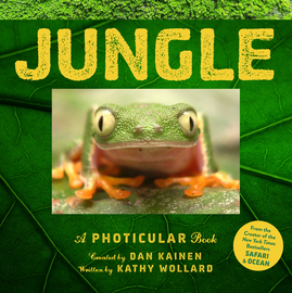 Jungle - cover