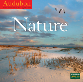 Audubon Nature Wall Calendar 2017 - cover