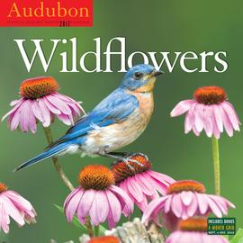 Audubon Wildflowers Wall Calendar 2017 - cover