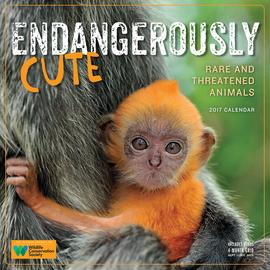 Endangerously Cute Wall Calendar 2017 - cover
