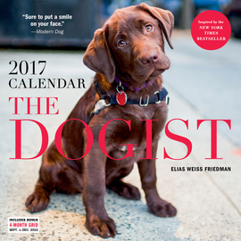 The Dogist Wall Calendar 2017 - cover