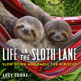 Life in the Sloth Lane - cover