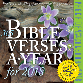 365 Bible Verses-A-Year Page-A-Day Calendar 2018 - cover
