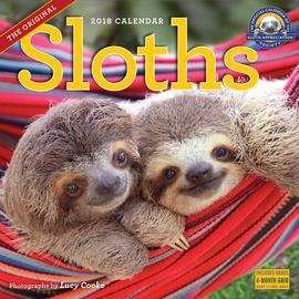 Sloths Wall Calendar 2018 - cover