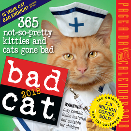 Bad Cat Page-A-Day Calendar 2018 - cover