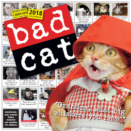 Bad Cat Wall Calendar 2018 - cover