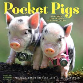 Pocket Pigs Wall Calendar 2018 - cover