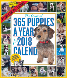 365 Puppies-A-Year Picture-A-Day Wall Calendar 2018 - cover