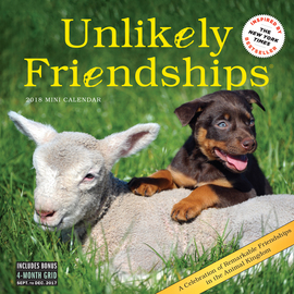 Unlikely Friendships Mini Wall Calendar 2018 - cover