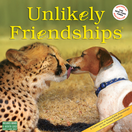 Unlikely Friendships Wall Calendar 2018 - cover