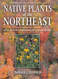 Native Plants of the Northeast - cover