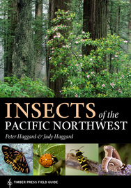 Insects of the Pacific Northwest - cover