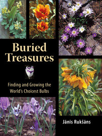 Buried Treasures - cover