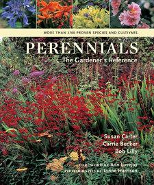 Perennials - cover