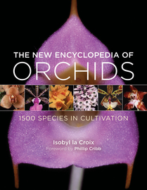 The New Encyclopedia of Orchids - cover
