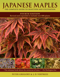 Japanese Maples - cover