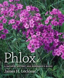 Phlox - cover