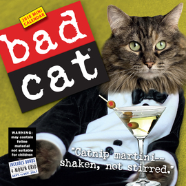 Bad Cat Mini Wall Calendar 2018 - cover