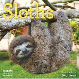 Sloths Mini Wall Calendar 2018 - cover