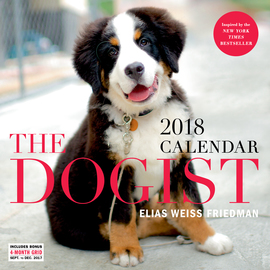The Dogist Wall Calendar 2018 - cover