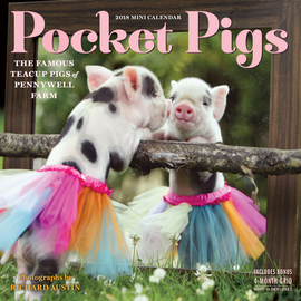 Pocket Pigs Mini Wall Calendar 2018 - cover