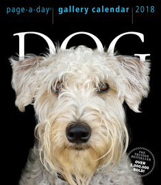 Dog Page-A-Day Gallery Calendar 2018 - cover