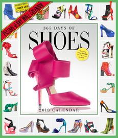 365 Days of Shoes Picture-A-Day Wall Calendar 2018 - cover