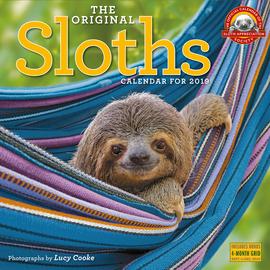 The Original Sloths Wall Calendar 2019 - cover
