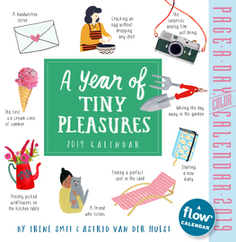A Year of Tiny Pleasures Page-A-Day Calendar 2019 - cover