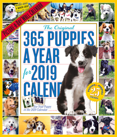 365 Puppies-A-Year Picture-A-Day Wall Calendar 2019 - cover