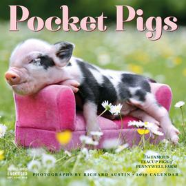 Pocket Pigs Wall Calendar 2019 - cover