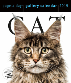Cat Page-A-Day Gallery Calendar 2019 - cover