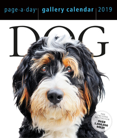 Dog Page-A-Day Gallery Calendar 2019 - cover