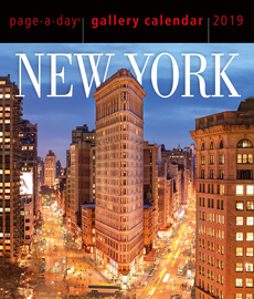 New York Page-A-Day Gallery Calendar 2019 - cover