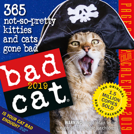 Bad Cat Page-A-Day Calendar 2019 - cover