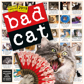 Bad Cat Wall Calendar 2019 - cover