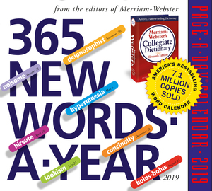 365 New Words-A-Year Page-A-Day Calendar 2019 - cover