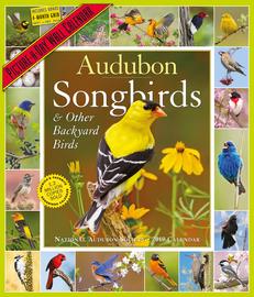 Audubon Songbirds and Other Backyard Birds Picture-A-Day Calendar 2019 - cover
